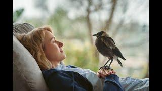 Penguin Bloom, con Naomi Watts | Spot TV europei