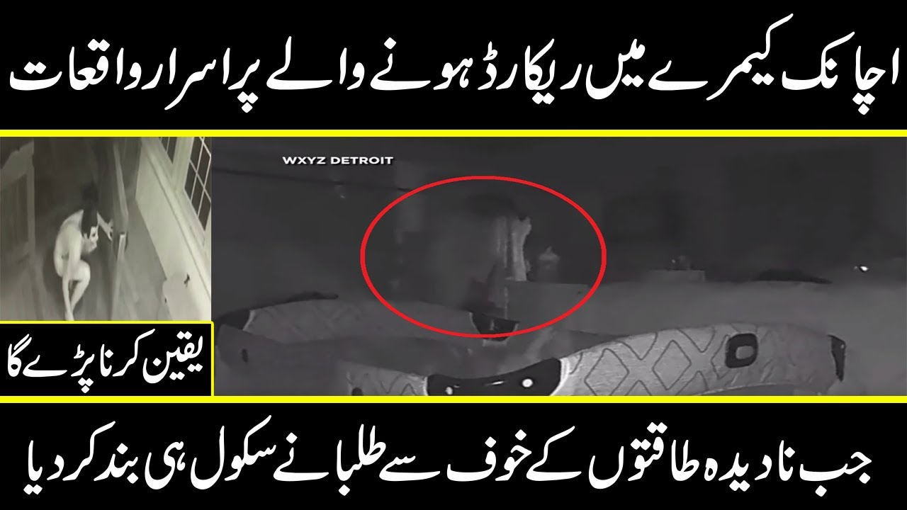 para noraml activities caught on camera you cant believe in urdu hindi | Urdu Cover
