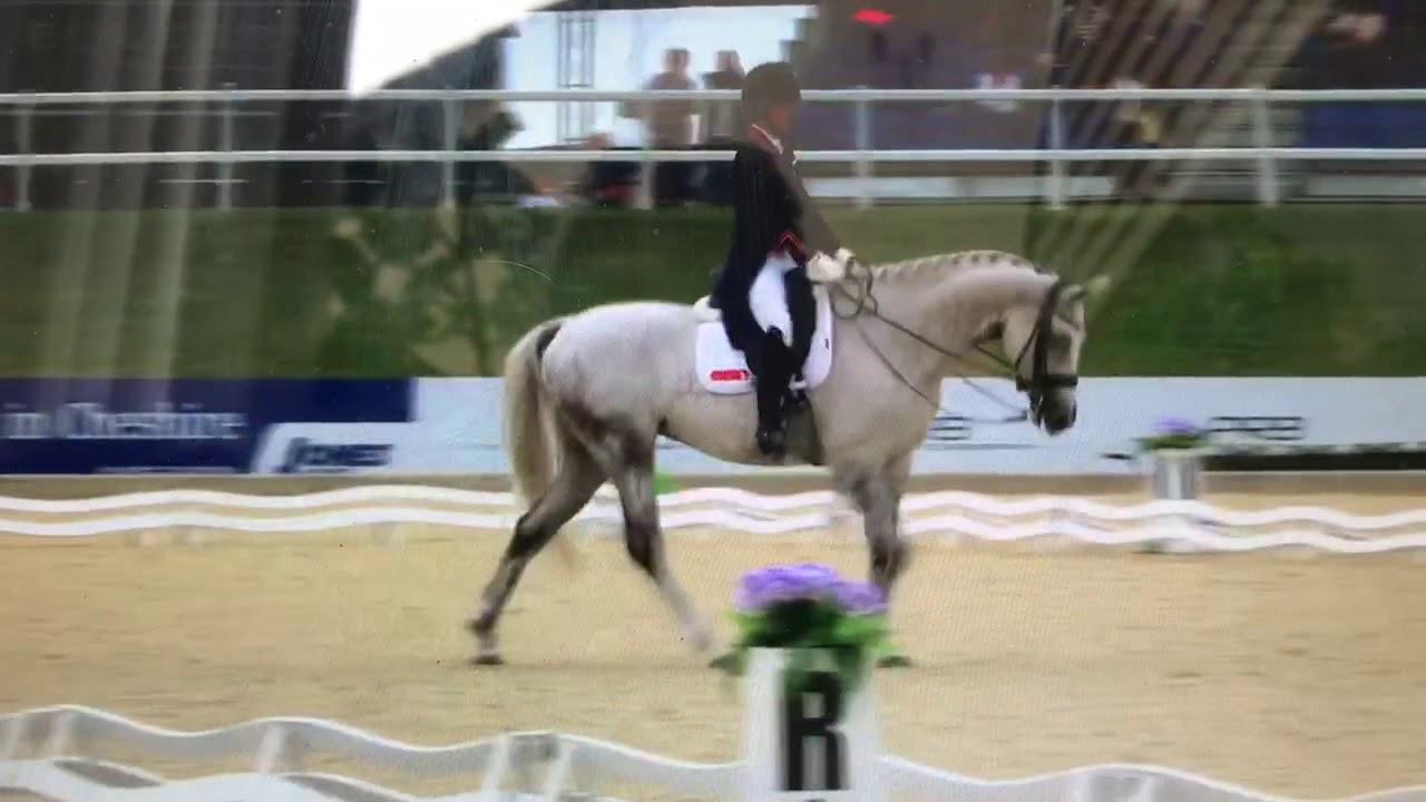 Carl Hester devient copropriétaire de plusieurs chevaux de Charlotte Dujardin