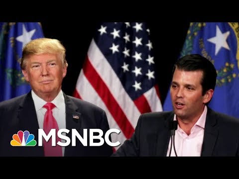 NYT: Email To Trump Jr. Shows Russian Gov