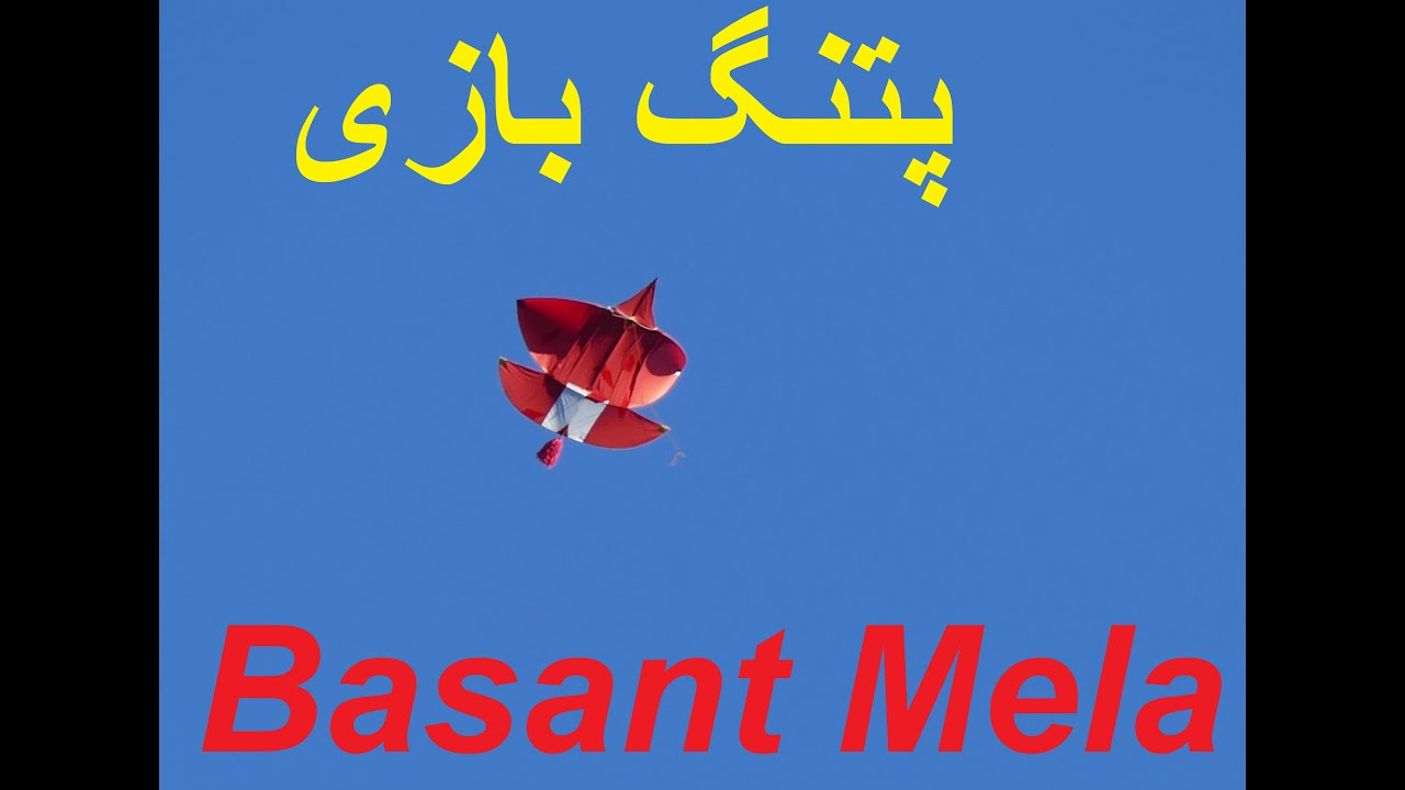 Patang Bazi Canada ( Kite Fighting ) Kite Flying Pipa Combate I Basant Mela in Toronto