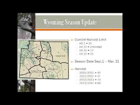 Mountain Lion Informational PresentationAugust 14