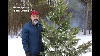 How to dye yarn with white spruce and snow.