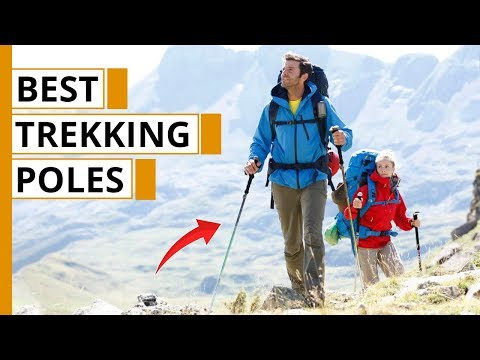 Top 7 Best Trekking Poles of 2020