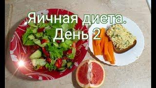 Яичная диета. День 2. Куриные фрикадельки, яичный паштет, салат из овощей.