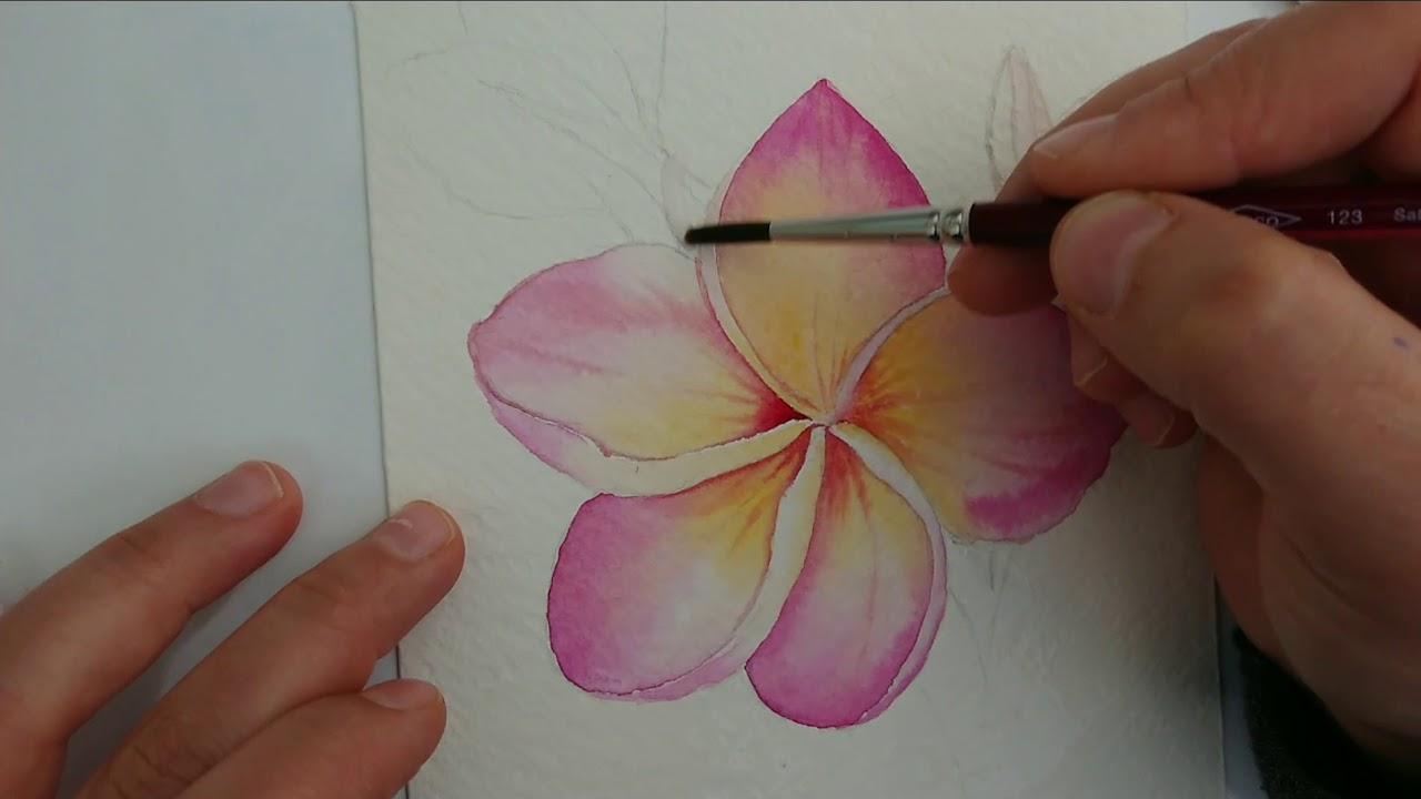 Suluboya Cicek Nasil Yapilir Watercolor Demo Youtube