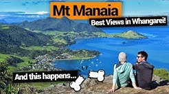 Mt Manaia Hike in Whangarei Heads – New Zealand's Biggest Gap Year – Backpacker Guide New Zealand