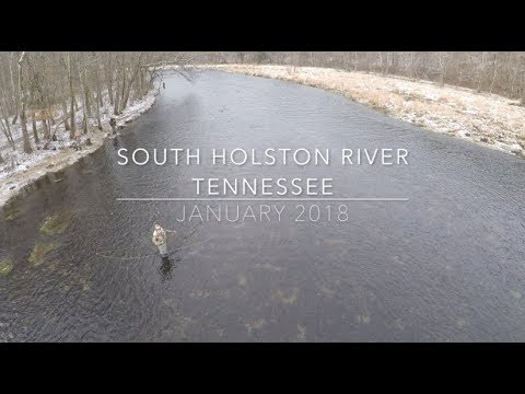 Fly Fishing for Big Browns: South Holston River Tennessee