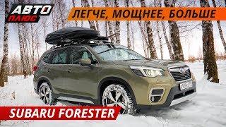 Subaru Forester 2019 - отличный семейный кроссовер