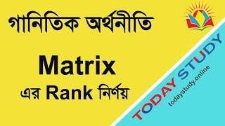Mathematical Economi matrix  er rank 