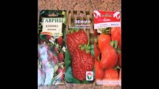 семена овощей и фруктов(, 2015-02-09T15:16:42.000Z)