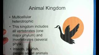 Biology #9 - Part 1 - Taxonomy of Organisms 00_00_00-00_08_43.wmv