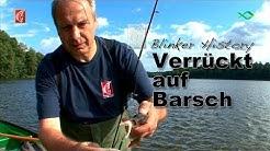 Barsch Blinker