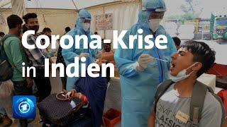 Corona in Indien: Infektionszahlen explodieren