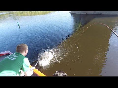 Mid-Summer Walleye Adirondack Fishing- Meat Wagon Outdoors