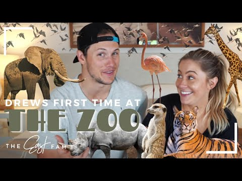 babies first time at the zoo!!! | the east family