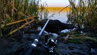 Рыбалка готовим обед на берегу озера