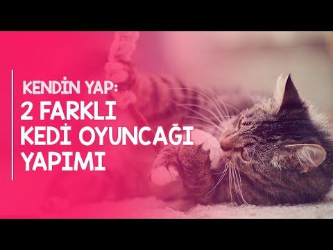 Kendin Yap: İki Farklı Kedi Oyuncağı Yapımı