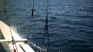Catamaran Hurricane Capsize