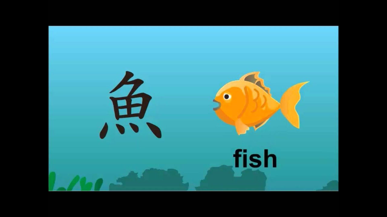 The Development Of Chinese Characters Fish Youtube