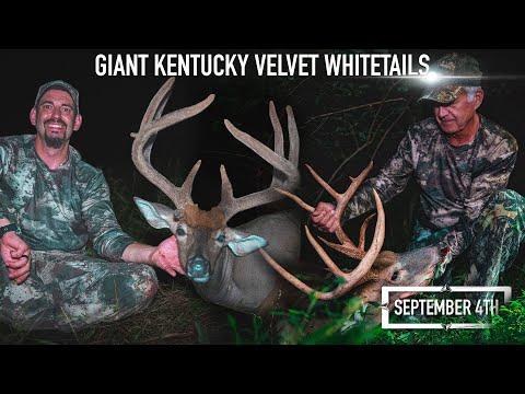 Giant Kentucky Velvet Whitetails   Mark Peterson Hunting