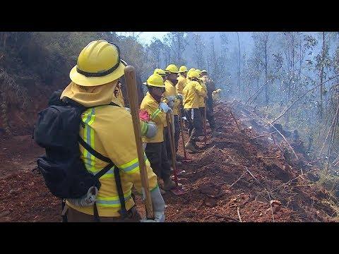 Incendio En Valparaíso: La Arriesgada Labor De Los Brigadistas Forestales