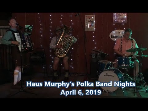 Roland Accordion, Dale Mathis Band, Haus Murphy's, April 6, 2019