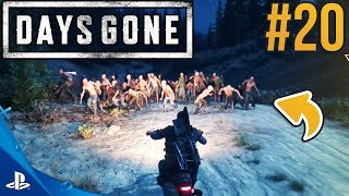 CO MOŻE PÓJŚĆ NIE TAK? DAYS GONE #20
