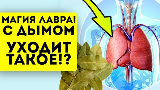 постер к видео С дымом лаврового листа уходит ТАКОЕ! Необратимые изменения от 2 листков
