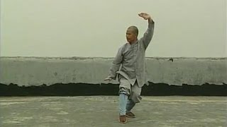 Repeat youtube video Shaolin small penetrating-arms kung fu (tong bi quan)