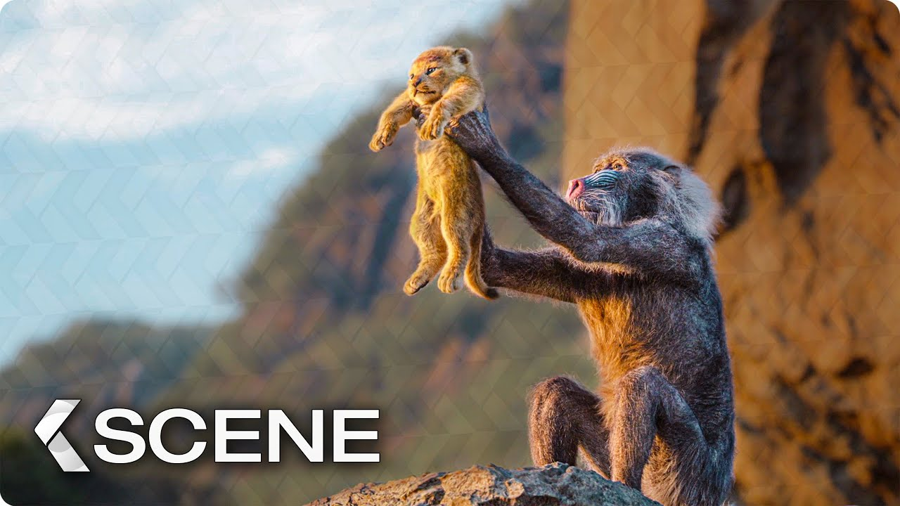 circle of life scene - the lion king  2019