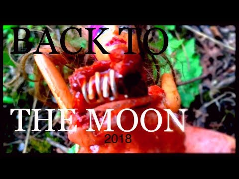 ...BaCK TO THE MOoN. 2017. (Part 3). Found by NASA! DBM England.