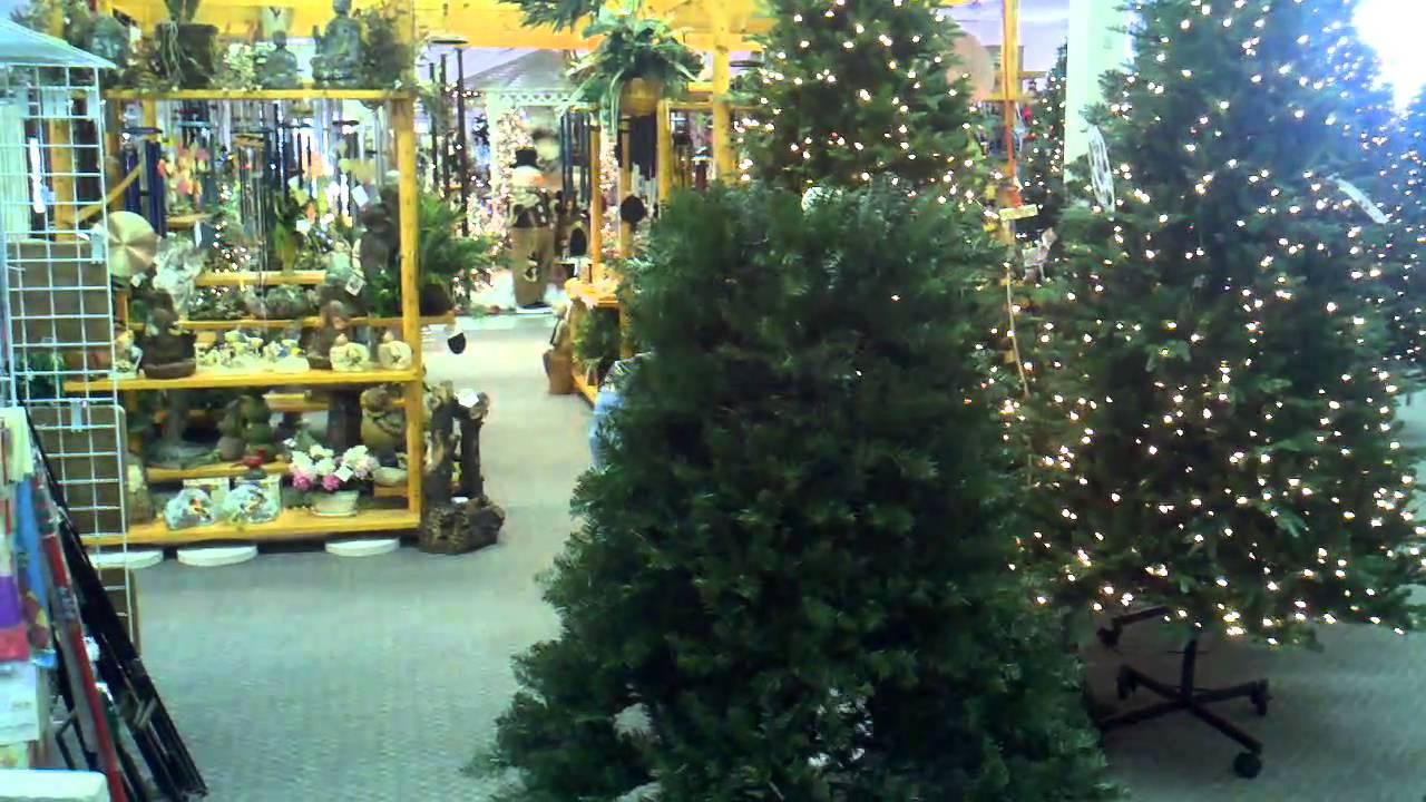 DeHaven\'s Home & Garden - Instant Christmas Tree - YouTube