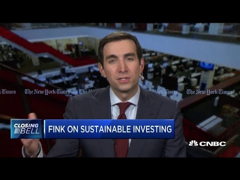 BlackRock CEO Larry Fink on sustainable investing