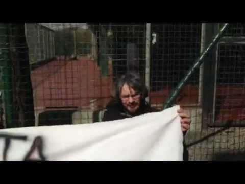 Azione contro la vivisezione al San Raffaele