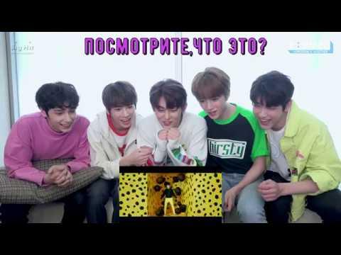 [RUS SUB](CROWN)' MV reaction-TXT