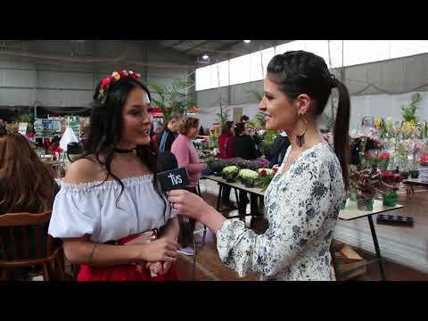 Informe TVS Festa das Flores