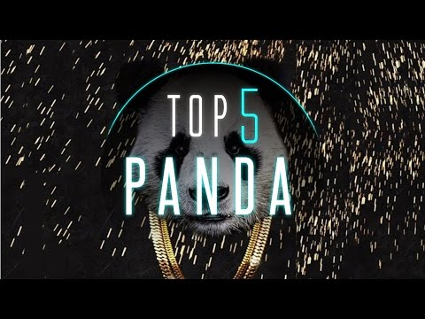 Best Desiigner - Panda Dance Videos | #DanceOnPanda
