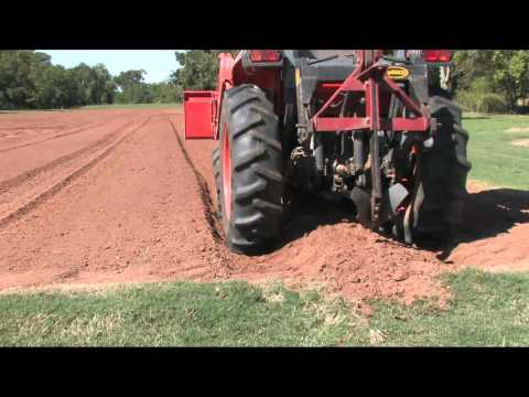 Planting Onion Seed – Oct 2011 – The Vegetable Garden