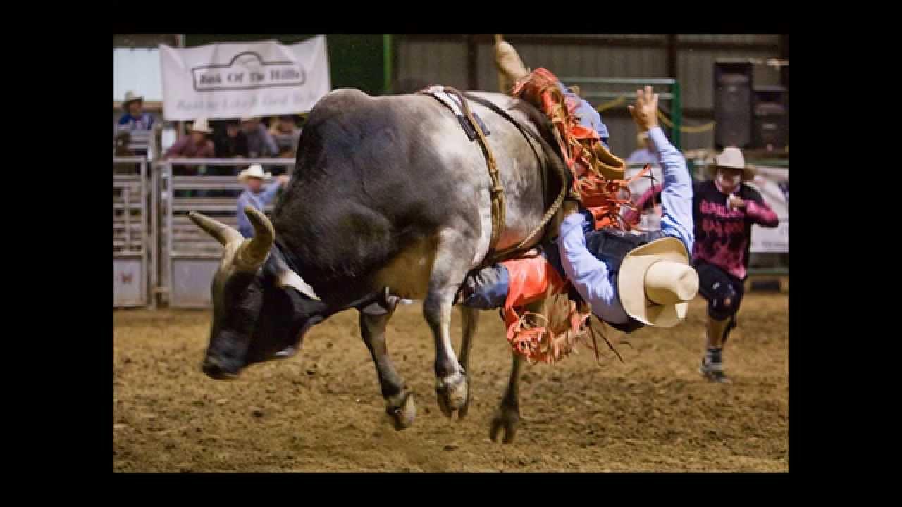 Bull Wrecks Mooooo Cowboy Youtube