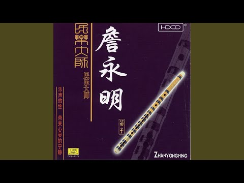 Performances by a Master of Traditional Music: Zhan Yongming
