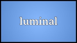 Luminal Meaning