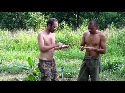 Bangkok Permaculture and Sustainable Living Part 1