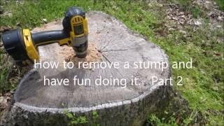 Easy Way to Reṁove Tree Stumps - Part 2