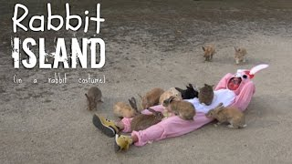 We visited Rabbit Island in a bunny suit covered in food!!