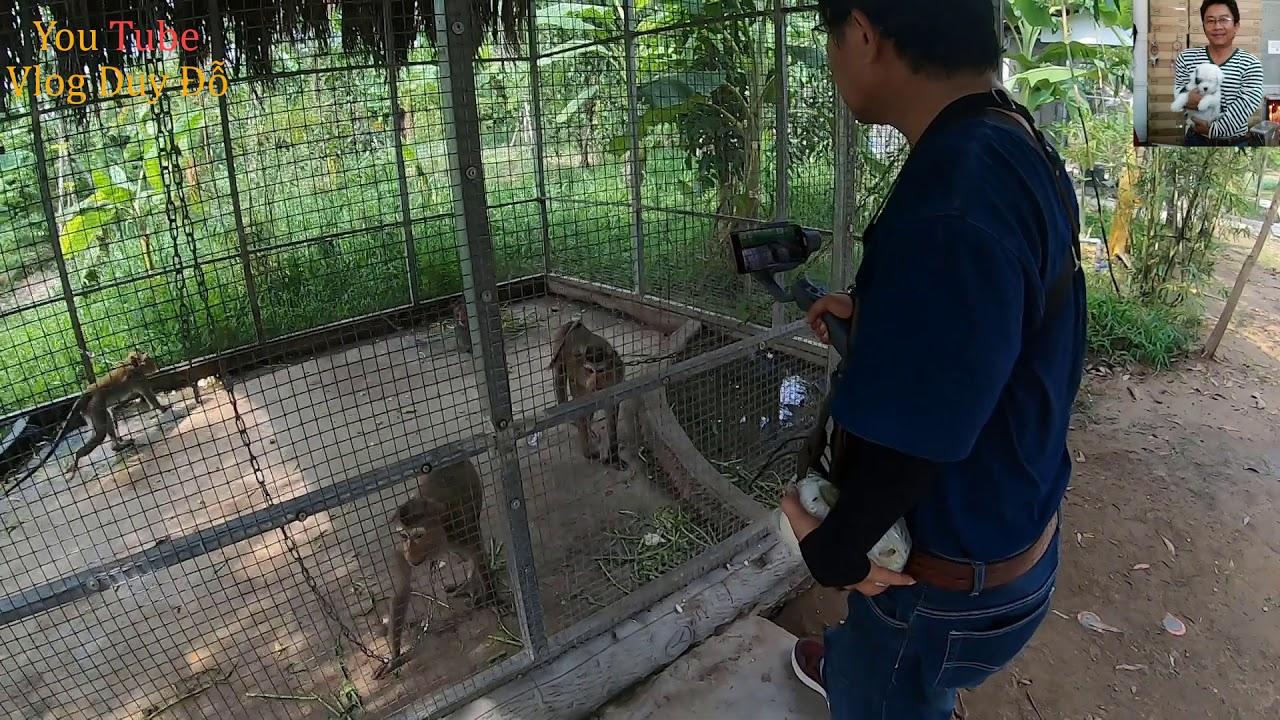 Đi xem vườn thú bên trong làng du lịch Mỹ Khánh Cần Thơ