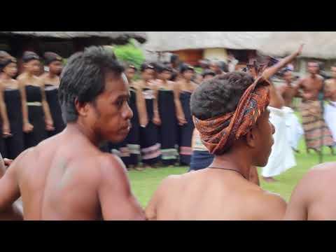 Bei Mau: Circle Songs at a Tetun Harvest Festival Mp3