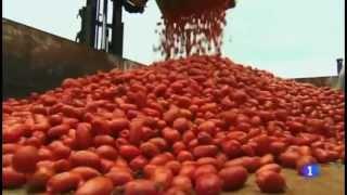 Tomatina 2013 - España a Ras De Cielo
