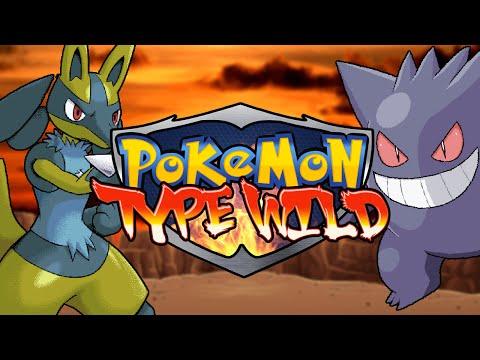 Pokémon Type Wild | Versus Battle With GCPM11!