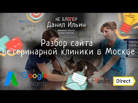 Смотреть Разбор сайта - ветеринарной клиники в Москве онлайн